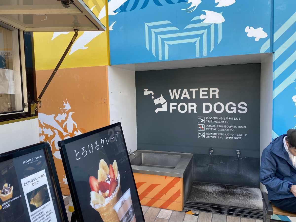 木更津アウトレットのフードコートの犬の為の水飲み場