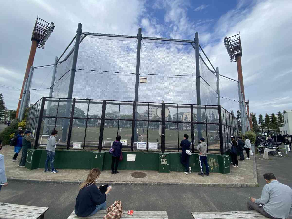 世田谷公園の野球場