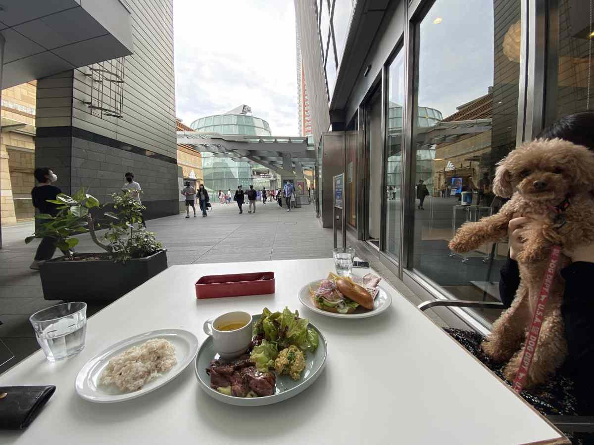 ヒルズ カフェ/スペースのテラス席