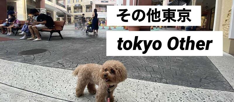 東京その他