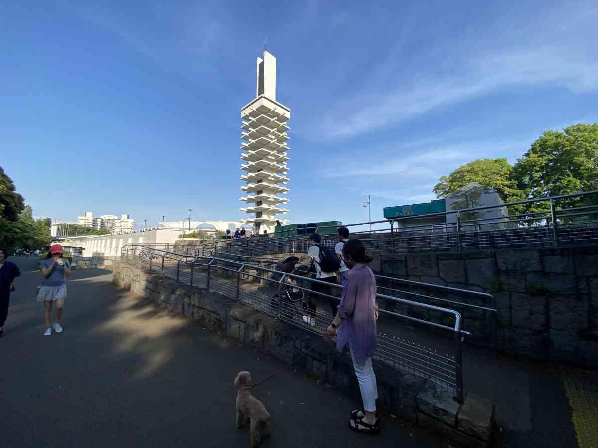 駒沢公園の飛び込み台