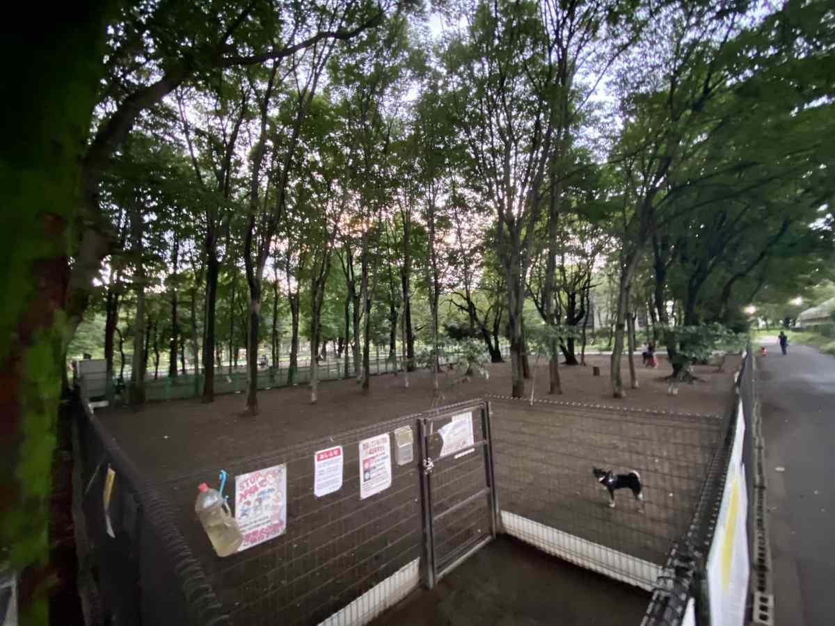 城北中央公園のドッグランの全容
