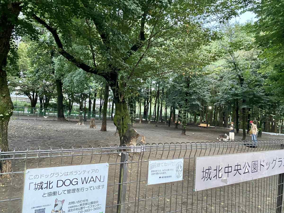 城北中央公園のドッグランの大型犬専用エリアの雰囲気