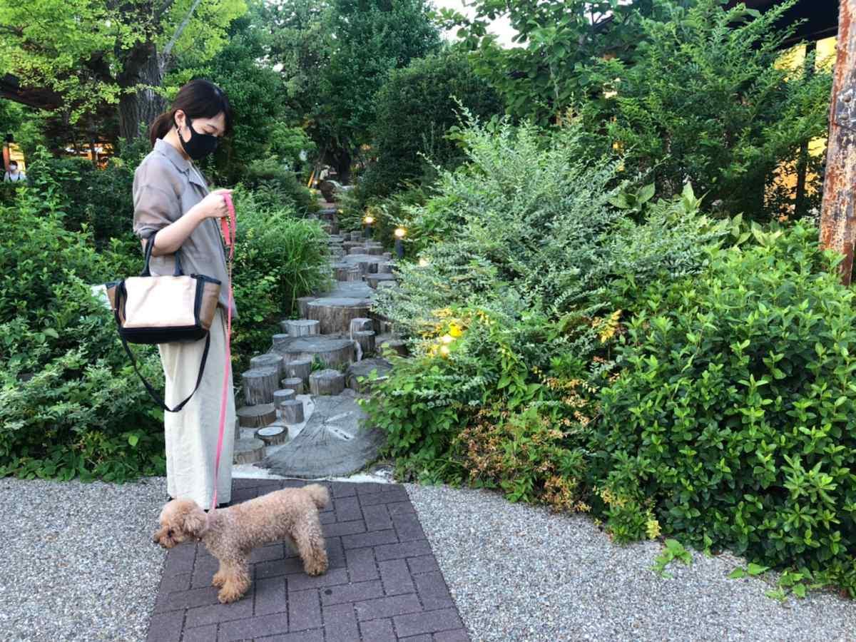 モリパーク アウトドアヴィレッジ(昭島)の雰囲気