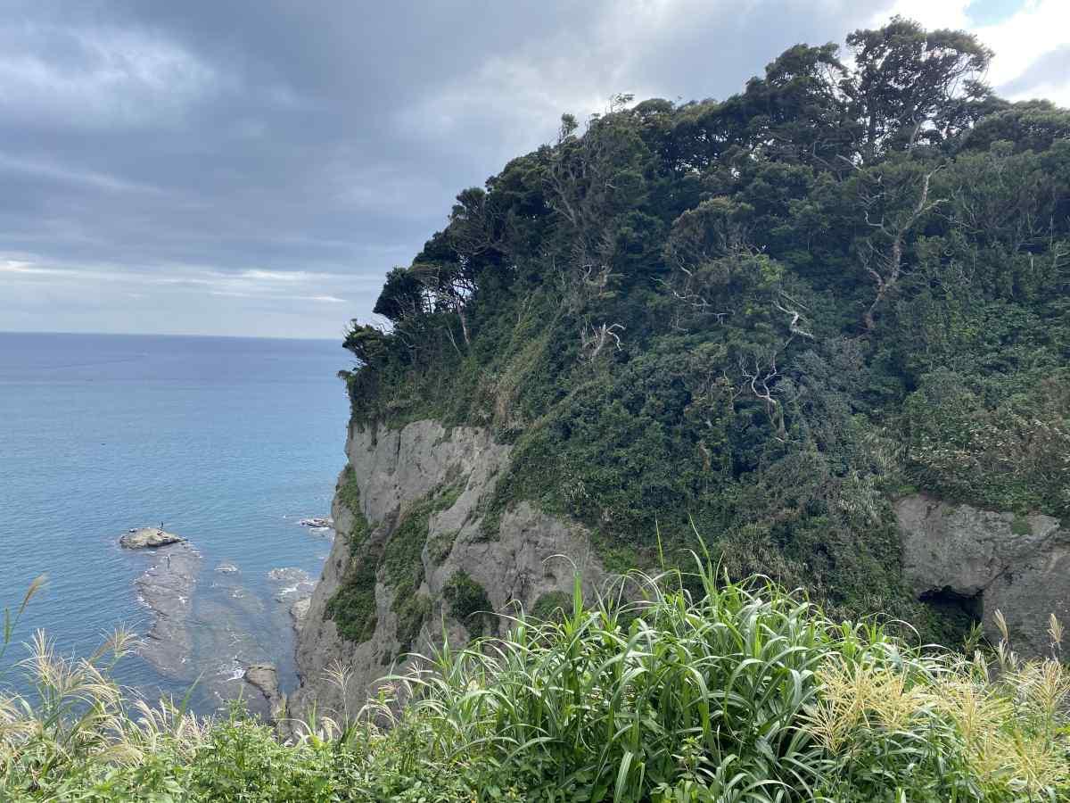 江の島の頂上からの眺望