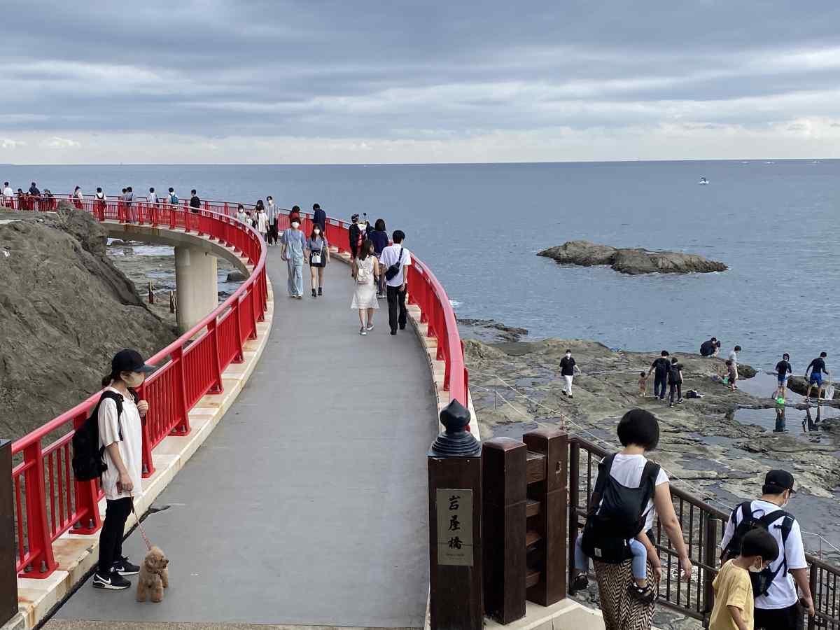 江の島の「稚児ヶ淵」の橋の上から
