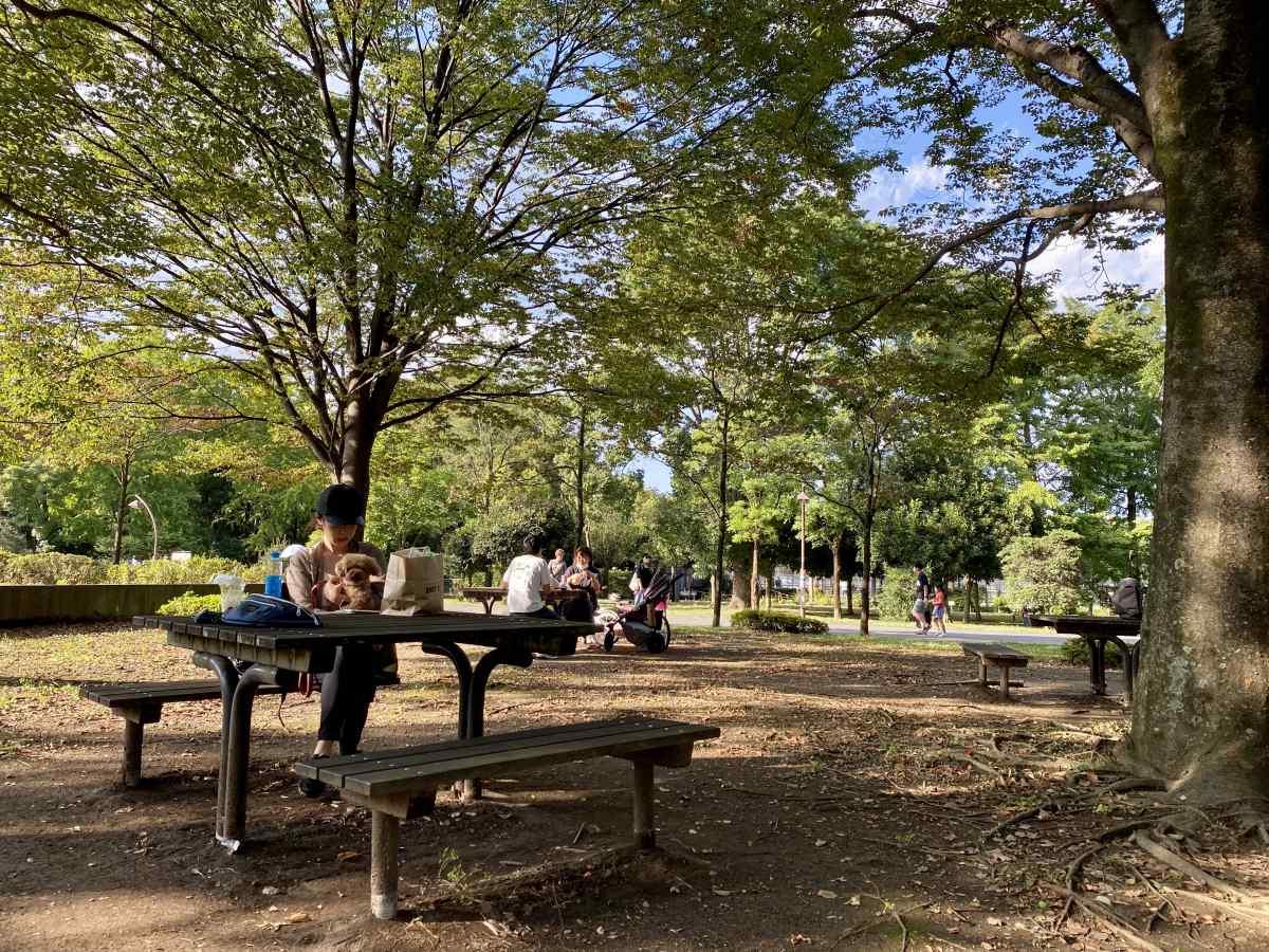 光が丘公園、駐車場すぐのテーブル席