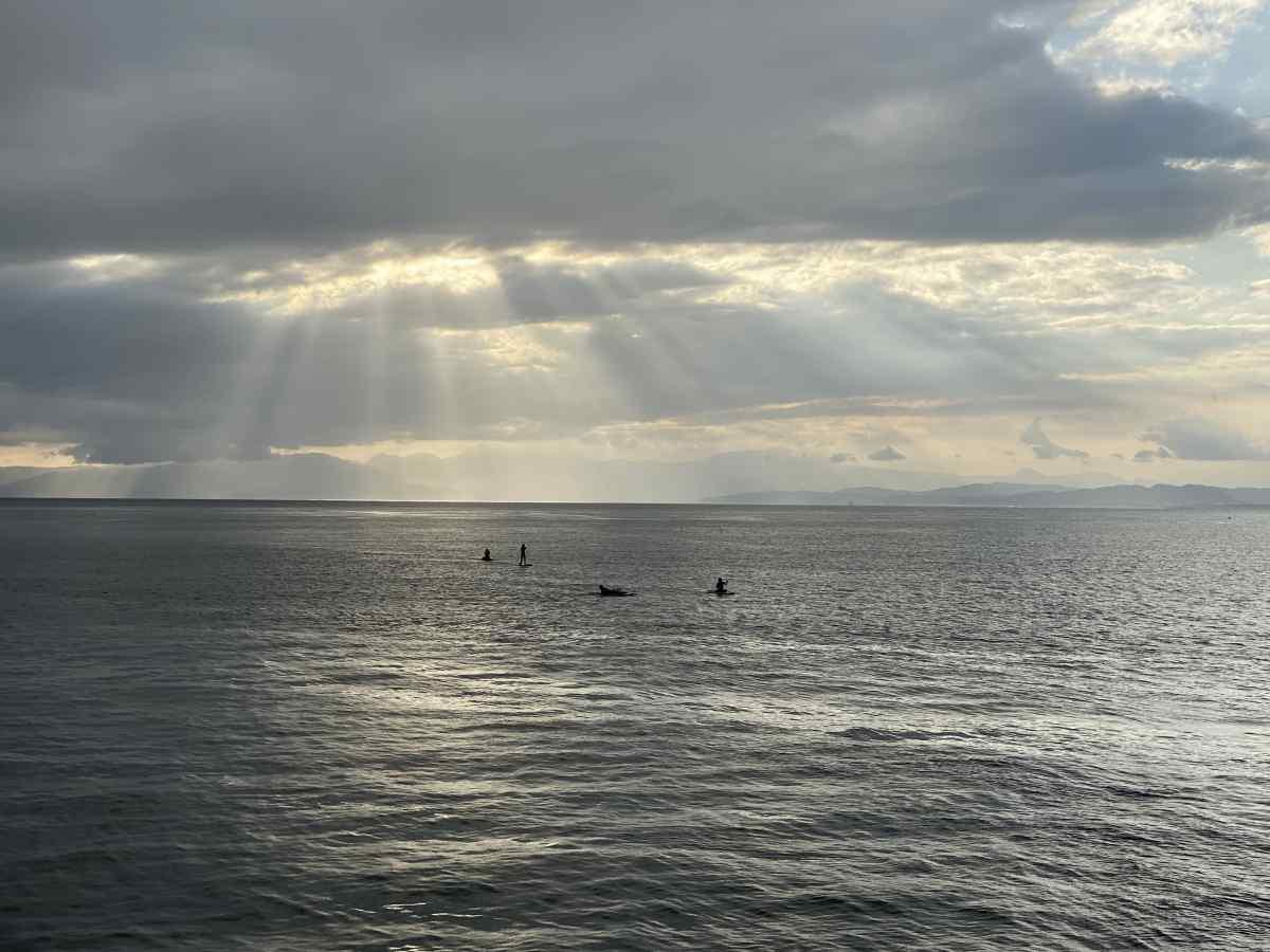 江の島から望む海