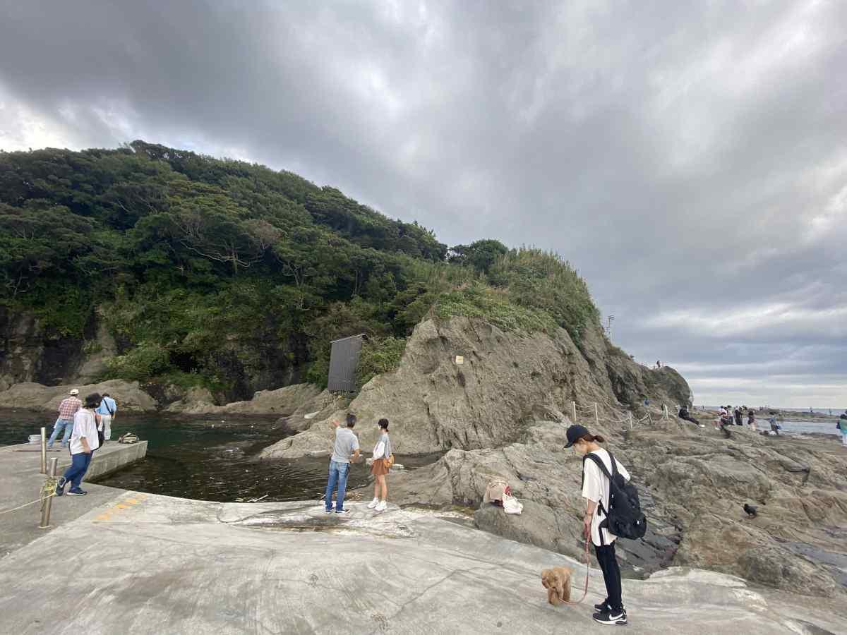 江の島の「稚児ヶ淵」の岩場
